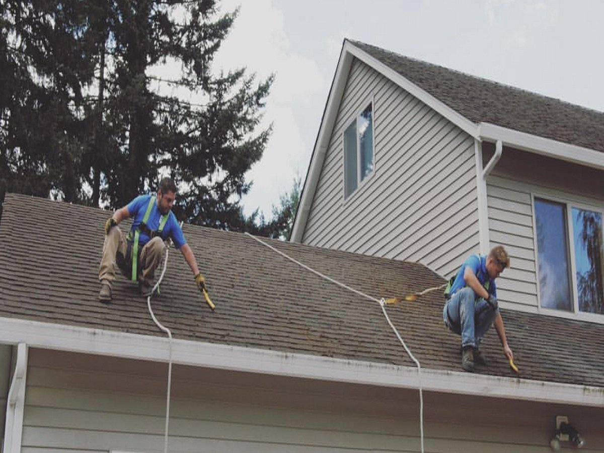 Roof Cleaning Portland, Portland Roof Cleaning, Moss Removal Portland, Gutter Cleaning Portland, Portland Gutter Cleaning, Pressure Washing Portland, Roof Moss Removal Portland, Roof Treatment Portland, Portland Moss Removal, Portland Roof Moss Removal, Roof Moss Cleaning Portland, Portland Roof Moss Cleaning, Roof Moss Treatment Portland, Cedar Shake Roof Cleaning Portland, Portland Cedar Shake Roof Cleaning, Cedar Roof Treatment Portland, Portland Pressure Washing, Roof Moss Portland, Portland Roof Moss, Portland Roof Moss Treatment
